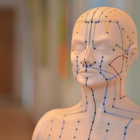 Unsere Akupunktur Leitlinien